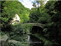 NZ2567 : Bridge to west of Jesmond Dene Mill by Andrew Curtis