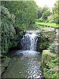 NZ2567 : Jesmond Dene waterfall from footbridge by Andrew Curtis