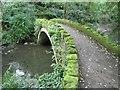 NZ2567 : Red Walk footbridge, Jesmond Dene by Andrew Curtis
