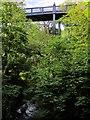 NZ2666 : Armstrong Bridge, Jesmond Dene by Andrew Curtis