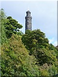 NT2674 : Nelson Monument from Regent Road by kim traynor