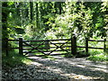 SR9896 : Gate and stile into Caroline Grove, Stackpole by nick macneill