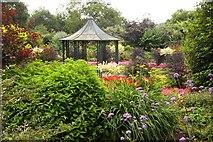 SJ7243 : Bridgemere Gardens by Steve Daniels