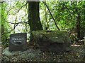 H1796 : Ballaun Stone, Gortletteragh Wood by Kenneth  Allen