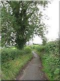 ST1273 : Lane near Wenvoe by Gareth James
