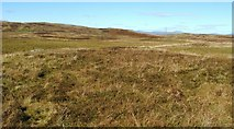 NS3072 : Possible hut circles on Burnhead Moor by Lairich Rig