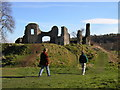 SN3140 : Castell Newydd Emlyn by John Brightley