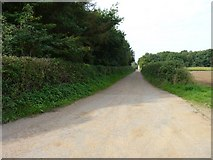 TG0604 : Trim hedges by James Allan
