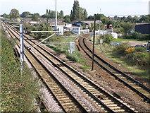 TL4658 : Railway lines near Coldham's Road by Michael Trolove
