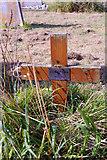 TG3433 : Grave - George Pilgrim 1845 - 1937, Bacton, Norfolk by Christine Matthews