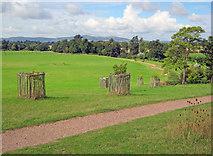 SO8845 : Croome Park by Trevor Rickard