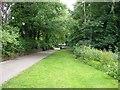 SJ8546 : Station Walks, Newcastle-Under-Lyme by Derek Harper