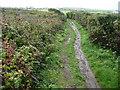 SW6912 : Autumn footpath near Lizard village by Jeremy Bolwell