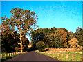 SD8631 : Deer Park Road by David Dixon