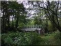 SM9624 : Footbridge over Cleddau by ceridwen