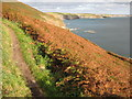 SW6026 : Coast path east of Rinsey by Philip Halling
