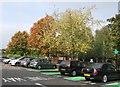 SJ9002 : Autumn colour in a corner of the supermarket car park by John M