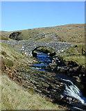 SH7532 : Pont y Gain by Nigel Brown