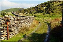SH6337 : Track Near Llandecwyn, Gwynedd by Peter Trimming