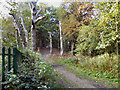 SD7703 : Clifton Country Park by David Dixon