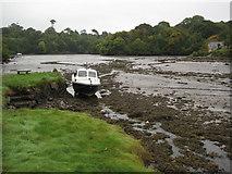 SW7724 : Low tide in Gillan Creek by Philip Halling