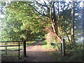 TQ4670 : Early morning at Scadbury Park Nature Reserve by Marathon