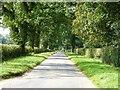 TG0403 : White Barn farm road by James Allan