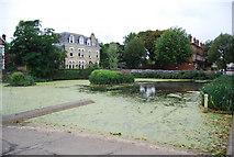 TQ1977 : Ornamental pond, Kew Green by N Chadwick