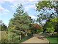 TQ3373 : Trees in Dulwich Park by Malc McDonald