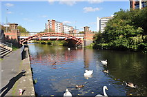SK5803 : Canal Bridge and Swans by Ashley Dace