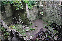 NZ2567 : The old mill site Jesmond Dene by peter maddison