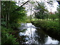 NY6524 : Trout Beck by David Brown