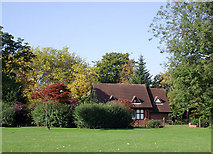 SO9098 : Tea room in the trees,  West Park, Wolverhampton by Roger  Kidd