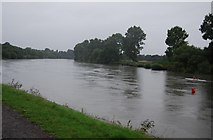 TQ1776 : River Thames, looking to Syon Reach by N Chadwick