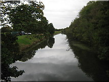 TR1034 : Royal Military Canal - looking west by David Anstiss