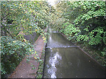 SP0683 : River Rea by Cannon Hill Park by Robin Stott