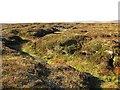 NT3744 : Bogs, Caddon Head by Richard Webb