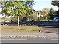 SO9497 : Car Park Birds by Gordon Griffiths