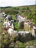 H5647 : Carnagat Court Tomb by Jimi Irwin