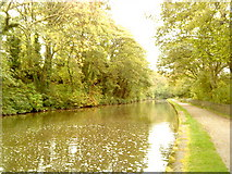 SE1039 : Leeds Liverpool Canal by Andrew Abbott
