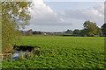 SJ8980 : River Dean by Ian Capper