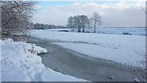 NZ2413 : River Tees at Low Coniscliffe frozen over, January 2010 by A Chilton