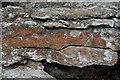 SK7605 : Oolitic Limestone by Ashley Dace