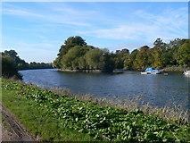 TQ1773 : The Thames near Marble Hill by Eirian Evans