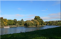 TQ1773 : Glover's Island, near Richmond on Thames by Eirian Evans