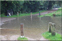 TQ1773 : Localised flooding on the Thames Path by N Chadwick