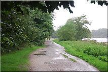 TQ1773 : Thames Path near Ham House by N Chadwick