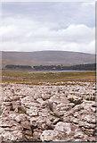 SD8965 : Limestone pavement at Prior Rakes by Sarah Charlesworth