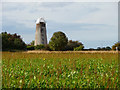 TG4023 : Disused Windmill, Hickling, Norfolk by Christine Matthews