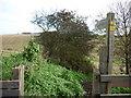 TA2370 : A footpath heading towards Flamborough lighthouse by Ian S